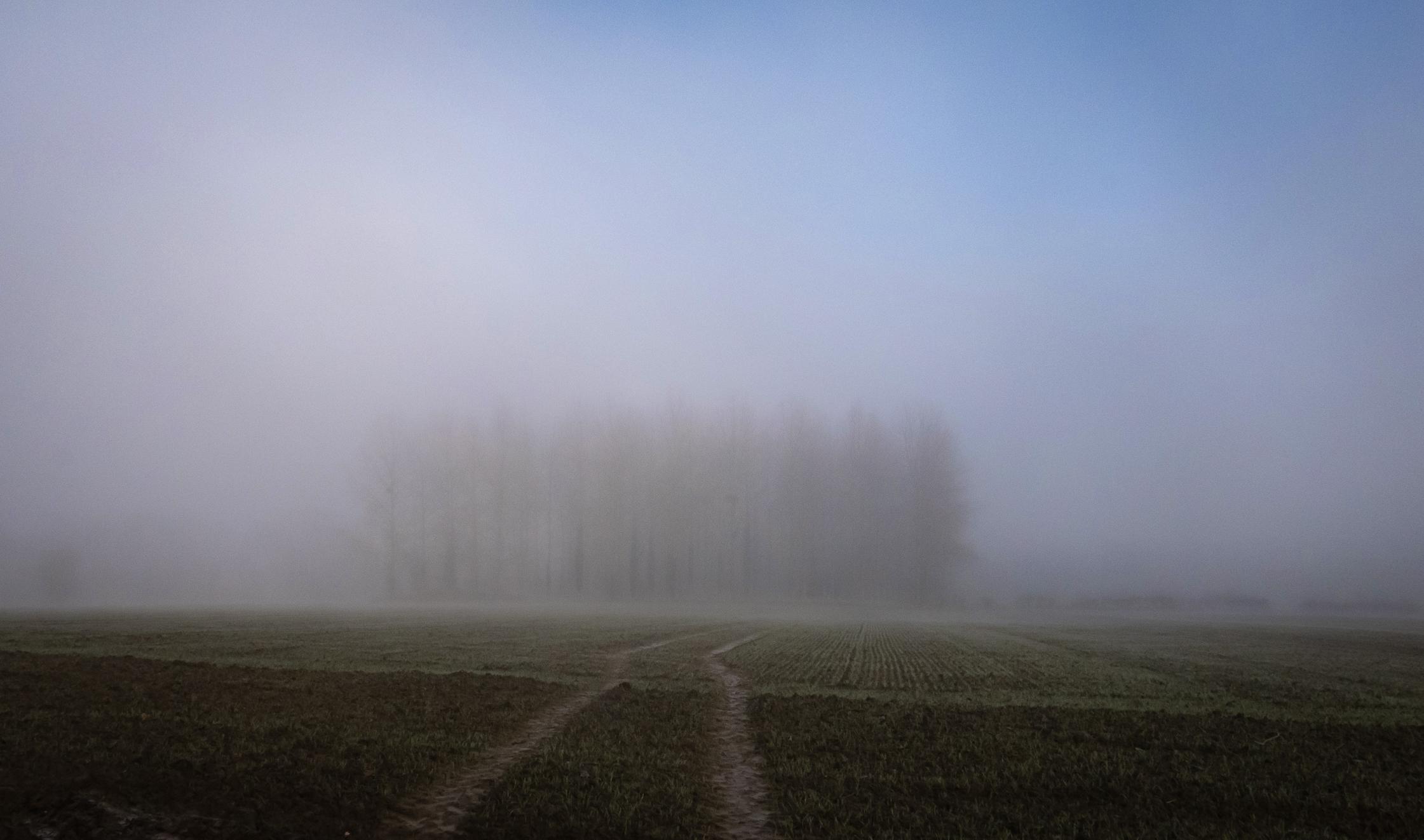 Jenlain sous la brume